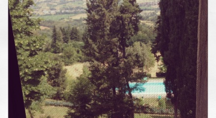 30th June 2014 Florence and Villa Campestri 2876