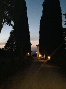30th June 2014 Florence and Villa Campestri 2879